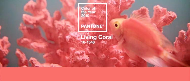A korall az év színe...
